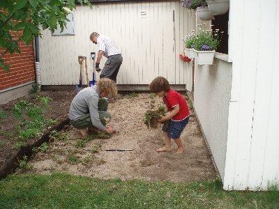Calle och Emanuel tar bort ogräset