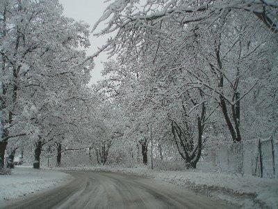 vinterväg ...